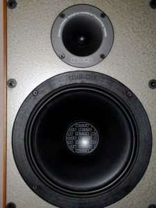Top half of the Argonaut, 1in dome tweeter, 8in woofer.  A 2nd 8in woofer is below.